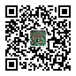 北京东方石油有机化工厂微信客服
